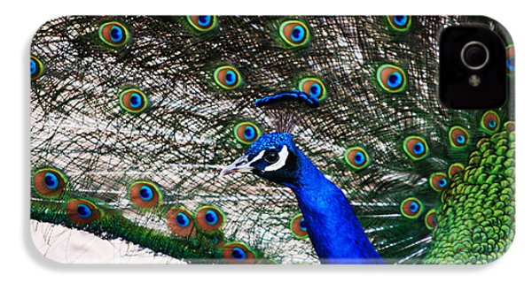 Proud Peacock IPhone 4s Case by Sheryl Cox
