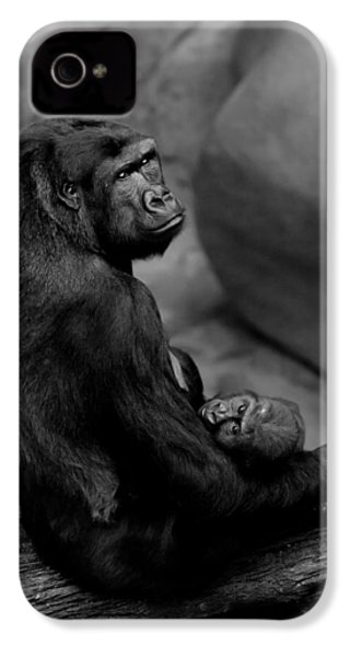 Tender Moment IPhone 4s Case by Sebastian Musial