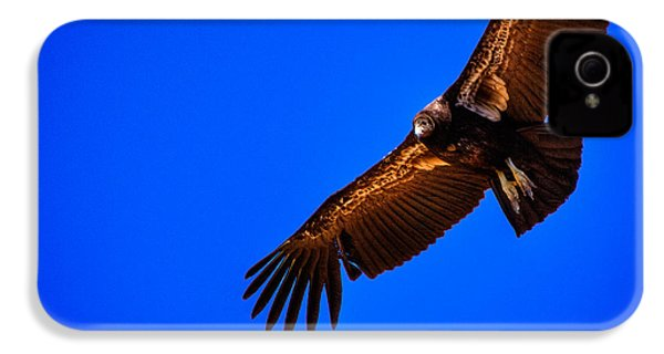 The California Condor IPhone 4s Case by David Patterson
