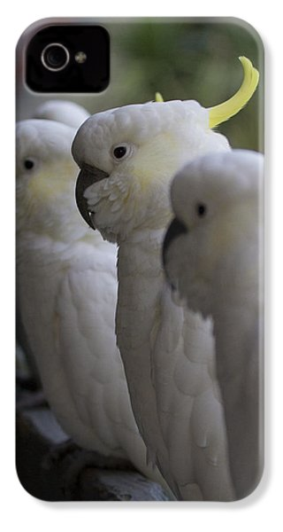 The Line-up IPhone 4s Case by Douglas Barnard