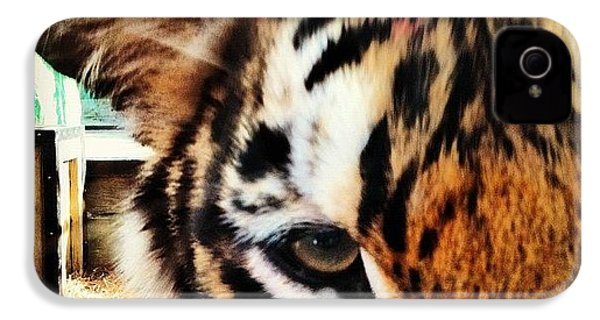 Tiger IPhone 4s Case