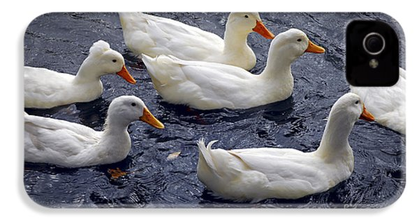 White Ducks IPhone 4s Case by Elena Elisseeva