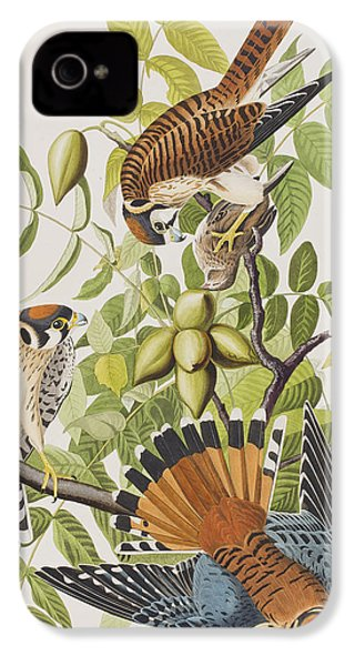 American Sparrow Hawk IPhone 4s Case by John James Audubon