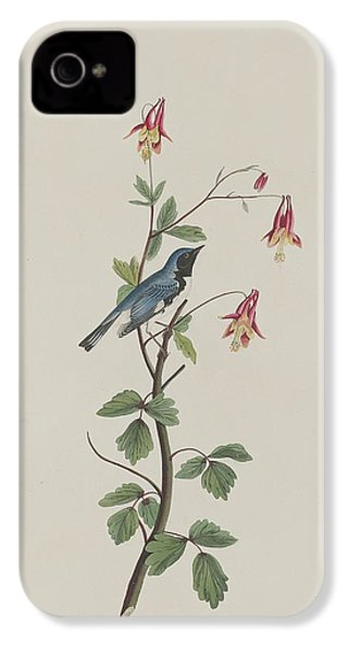 Black-throated Blue Warbler IPhone 4s Case by Dreyer Wildlife Print Collections