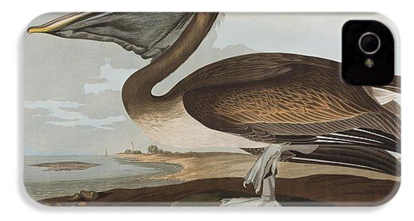 Brown Pelican IPhone 4s Case by John James Audubon