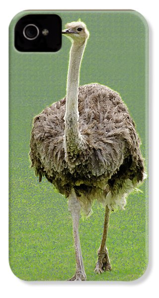 Emu IPhone 4s Case by Ellen Henneke