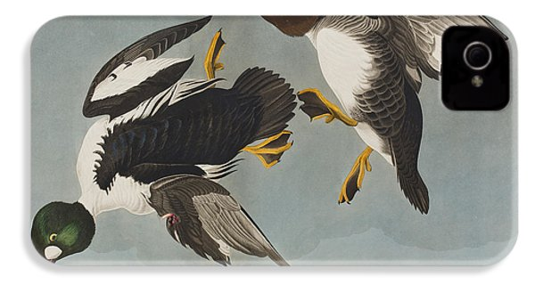 Golden-eye Duck  IPhone 4s Case by John James Audubon