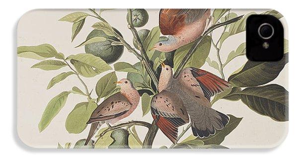 Ground Dove IPhone 4s Case by John James Audubon