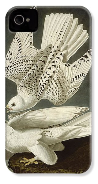 Iceland Or Jer Falcon IPhone 4s Case by Rob Dreyer