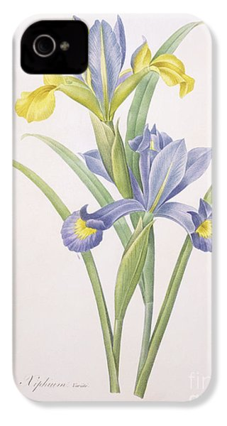 Iris Xiphium IPhone 4s Case