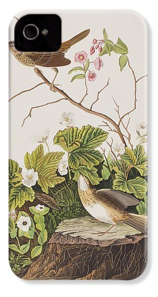 Lincoln Finch IPhone 4s Case by John James Audubon