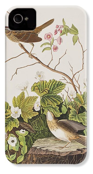 Lincoln Finch IPhone 4s Case