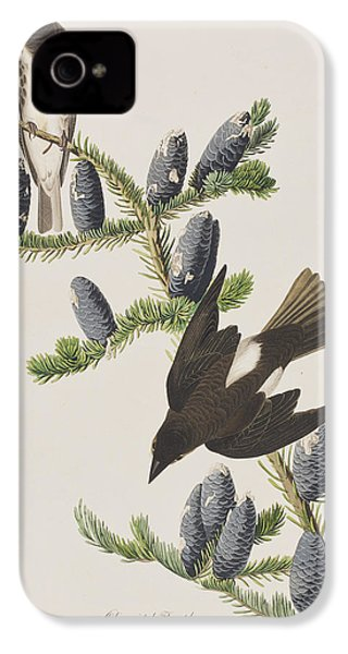 Olive Sided Flycatcher IPhone 4s Case by John James Audubon