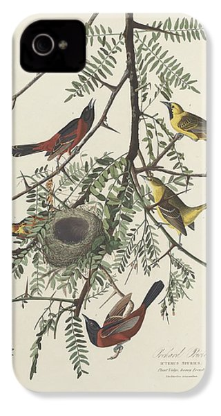 Orchard Oriole IPhone 4s Case by Rob Dreyer