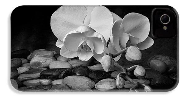 Orchid - Sensuous Virtue IPhone 4s Case by Tom Mc Nemar