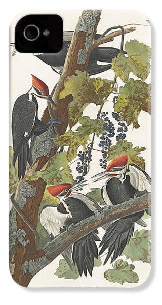 Pileated Woodpecker IPhone 4s Case by John James Audubon