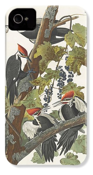 Pileated Woodpecker IPhone 4s Case by Dreyer Wildlife Print Collections