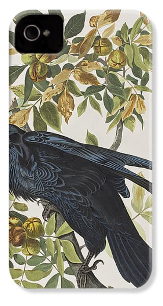 Raven IPhone 4s Case by John James Audubon