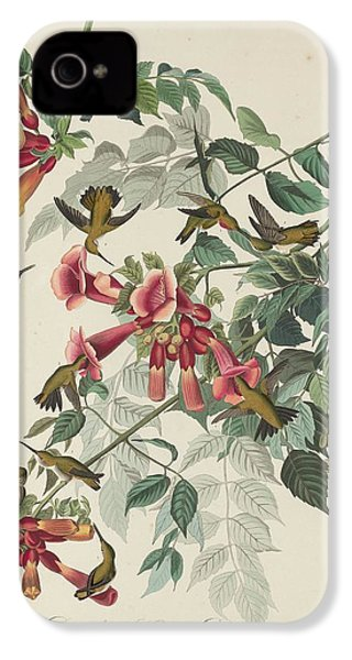Ruby-throated Hummingbird IPhone 4s Case