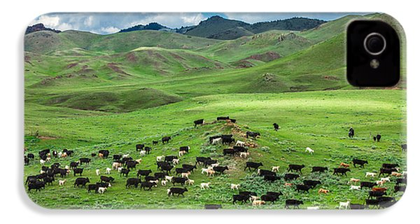 Salt And Pepper Pasture IPhone 4s Case by Todd Klassy