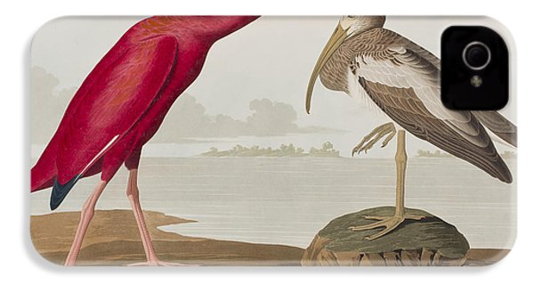 Scarlet Ibis IPhone 4s Case by John James Audubon