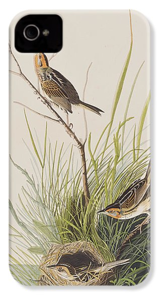 Sharp Tailed Finch IPhone 4s Case