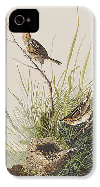 Sharp Tailed Finch IPhone 4s Case by John James Audubon