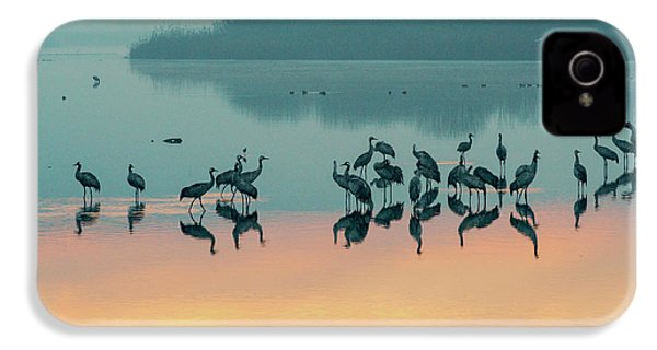 Sunrise Over The Hula Valley IPhone 4s Case by Dubi Roman
