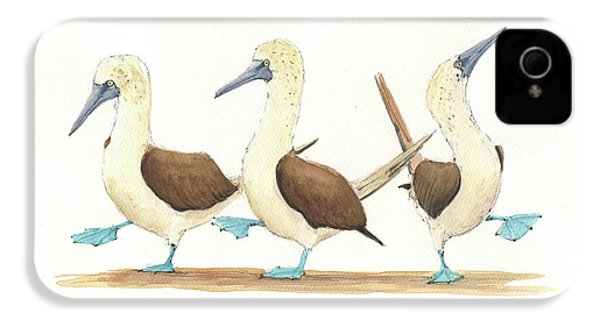 Three Blue Footed Boobies IPhone 4s Case by Juan Bosco