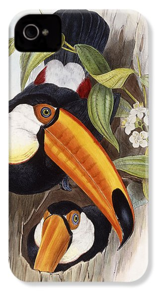 Toucan IPhone 4s Case by John Gould