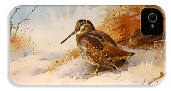 Winter Woodcock IPhone 4s Case by Mountain Dreams
