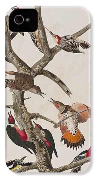 Woodpeckers IPhone 4s Case by John James Audubon