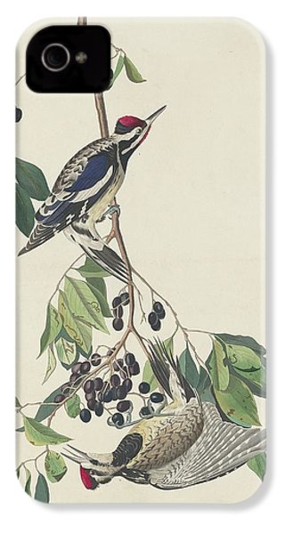 Yellow-bellied Woodpecker IPhone 4s Case by Dreyer Wildlife Print Collections