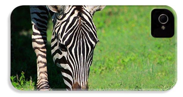 Zebra IPhone 4s Case by Sebastian Musial