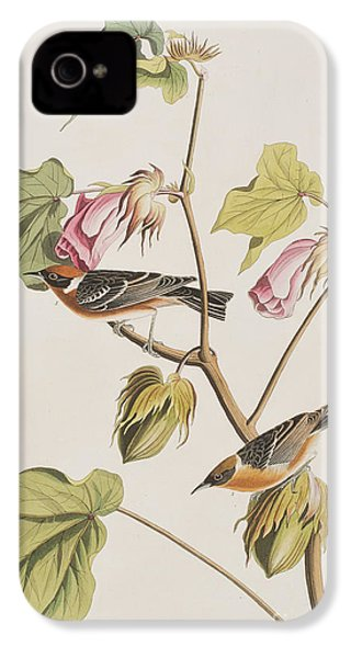 Bay Breasted Warbler IPhone 4s Case by John James Audubon