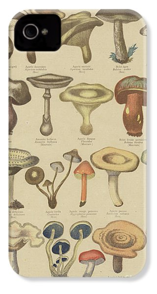 Edible And Poisonous Mushrooms IPhone 4s Case