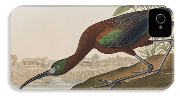 Glossy Ibis IPhone 4s Case by John James Audubon