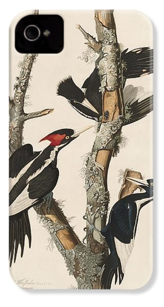 Ivory-billed Woodpecker IPhone 4s Case by Dreyer Wildlife Print Collections
