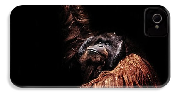 Orangutan IPhone 4s Case by Martin Newman