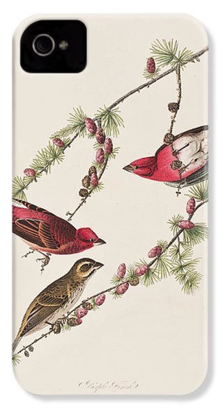Purple Finch IPhone 4s Case by John James Audubon