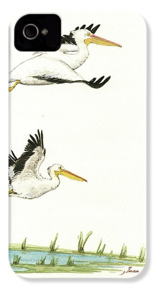 The Fox And The Pelicans IPhone 4s Case by Juan Bosco