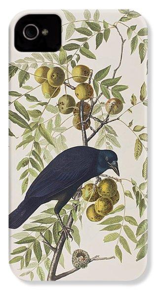 American Crow IPhone 4s Case by John James Audubon