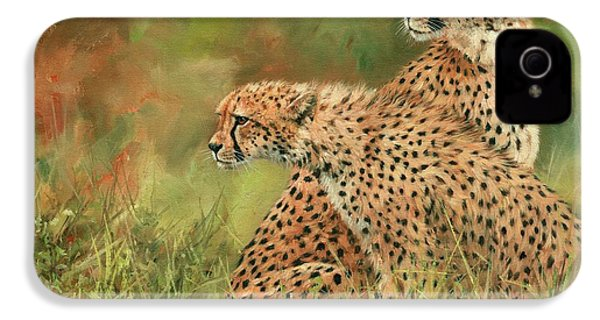 Cheetahs IPhone 4s Case by David Stribbling