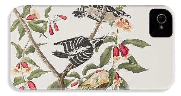 Downy Woodpecker IPhone 4s Case by John James Audubon