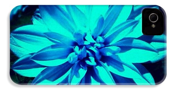 Flower IPhone 4s Case by Katie Williams