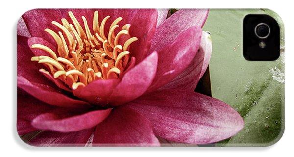 Lotus IPhone 4s Case