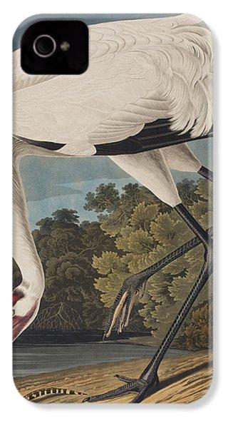 Whooping Crane IPhone 4s Case by John James Audubon