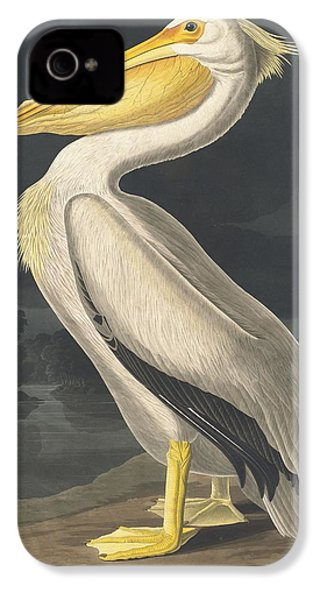 American White Pelican IPhone 4s Case by Rob Dreyer