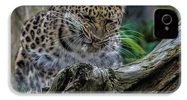 Amur Leopard IPhone 4s Case by Martin Newman