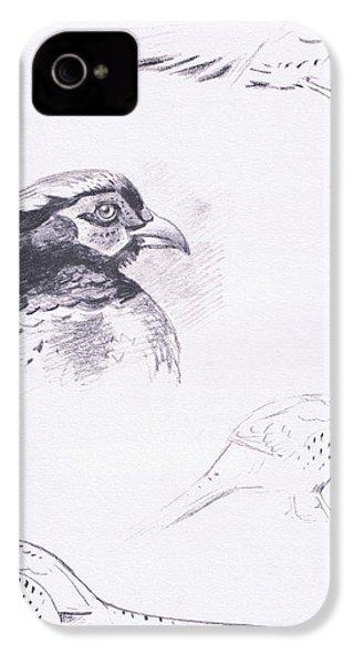 Pheasants IPhone 4s Case